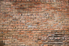 Old red brick wall Royalty Free Stock Image
