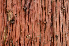 Old red and decaying wooden door Stock Image