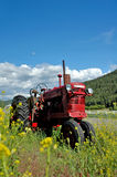 Old Red Farm Tractor. An old red farm tractor resting in a field surrounded by yellow flowers stock images