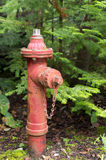 Old Red Fire Hydrant Stock Photography