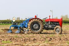 Old red massey fergusen tractor at ploughing match Stock Image