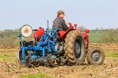 Old red massey fergusen tractor at ploughing match Stock Images