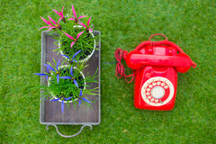 Old red phone with flower on the field of green grass Royalty Free Stock Photos