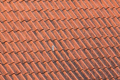 Old red roof tiles Royalty Free Stock Images