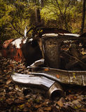Old Red and Rusty. Old car lost in the woods. Fall colors surround this shot up classic car Royalty Free Stock Photography