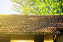 Old red tiled roof, close-up and green tree on background royalty free stock photo