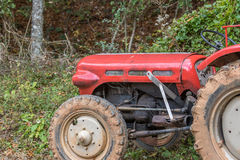 Old red tractor stock image