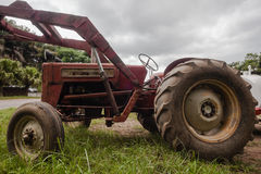 Old Red Tractor Farming Royalty Free Stock Photography