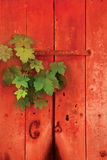 An old red wooden door Royalty Free Stock Image