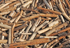 Old reed Stock Photos