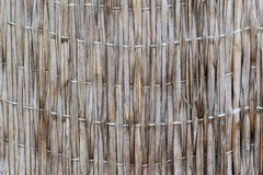 Old reed texture background Royalty Free Stock Photo