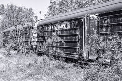 Old refrigerated railway wagon captured by vegetation. Royalty Free Stock Photos