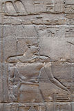 Old reliefs in Luxor temple Stock Images