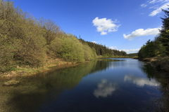 Old Reservoir in Gartheiniog Forest royalty free stock photo