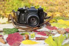 Old retro camera on vintage wooden background with autumn leaves Royalty Free Stock Images