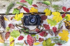 Old retro camera on vintage wooden background with autumn leaves Stock Photos