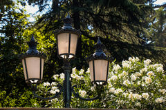 Old  retro electric street lamps made of metal style Stock Images
