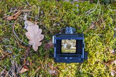 Old retro film camera in a sunny spring forest stock image