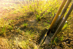 Old retro garden tools. (cultivator, shovel, rake) over brown soil (ploughed land) close up, horizontal.  Agriculture, gardening, soil cultivation, village life Stock Photo