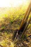 Old retro garden tools. (cultivator, shovel, rake) over brown soil (ploughed land) close up, vertical.  Agriculture, gardening, soil cultivation, village life Stock Image