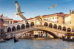 Rialto Bridge over the Grand Canal in Venice Royalty Free Stock Photos