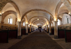 Old riding stable in Cordoba, Spain Stock Images