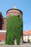 Old Riga, Latvia. Powder tower in Riga overgrown with convolvulus, Latvia stock image