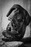 Old ripped boot on window Stock Image