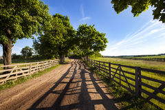 The old road. The old wooden fence constructed along the road to stables. Belarus Stock Photography