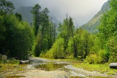 Old road. This is old road in Caucasus valley in autumn royalty free stock image