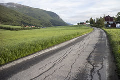 Old Road Dividing two Fields. Old road dividing fields with mounatins in background in Norway Stock Images
