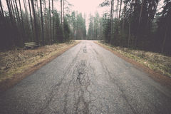Old road in the forest Stock Photography