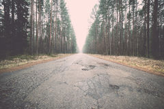 Old road in the forest Royalty Free Stock Photography