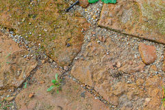 Old road pavement bricks Stock Images