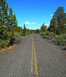 The Old Road. A section of old US 28 west of Redmond, OR royalty free stock images