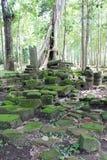 Old Rock inside Angkor Thom Stock Image