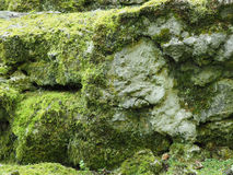 Old rocks with moss Stock Photo