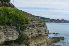 Old rocks shaped by sea. Rocks cliff shaped by the waves of the sea with some green plants Stock Photography