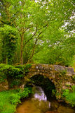 Forest Stream, Old Roman Bridge, Peaceful, Beautiful Natural Scenery Royalty Free Stock Photos