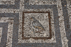 Old roman mosaic floor in Kos city Royalty Free Stock Photos