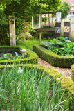Old romantic farm garden in the summer. Royalty Free Stock Image