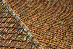 Old roof Stock Images