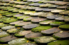 Old Roof. Roof tiles royalty free stock photography