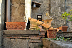 Old roof with ancient chimney in autumn Stock Photo