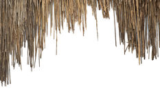 The old roof grass Royalty Free Stock Photography