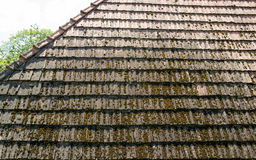 The old roof with moss-grown tiles Royalty Free Stock Photography