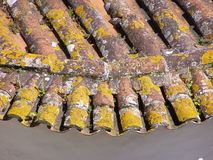 Old Roof Tiles Royalty Free Stock Photography