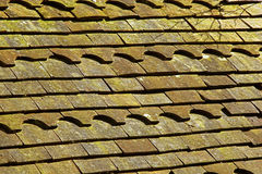 Old roof tiles. Old clay roof tiles partly coverd with algae Stock Photos