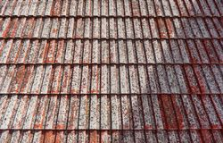 Old roof tiles as a background Stock Image