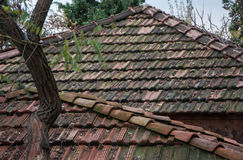 Old roof tiles. In high quality Stock Photos